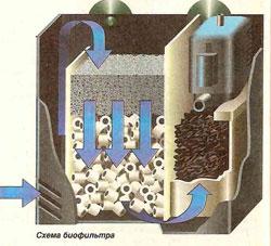 Биологический фильтр в аквариум своими руками