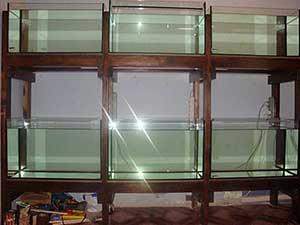 Делаем аквариумное хозяйство своими руками фото 919